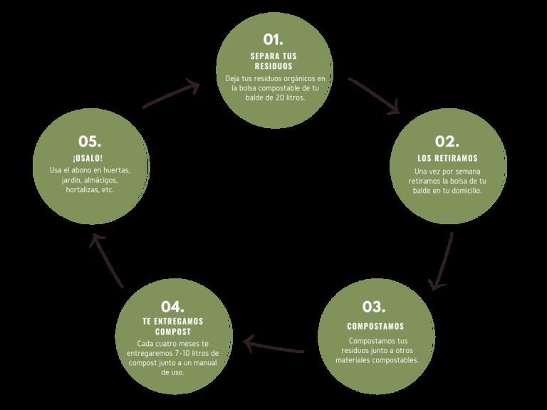 Diagrama del ciclo de Regenera Orgánico