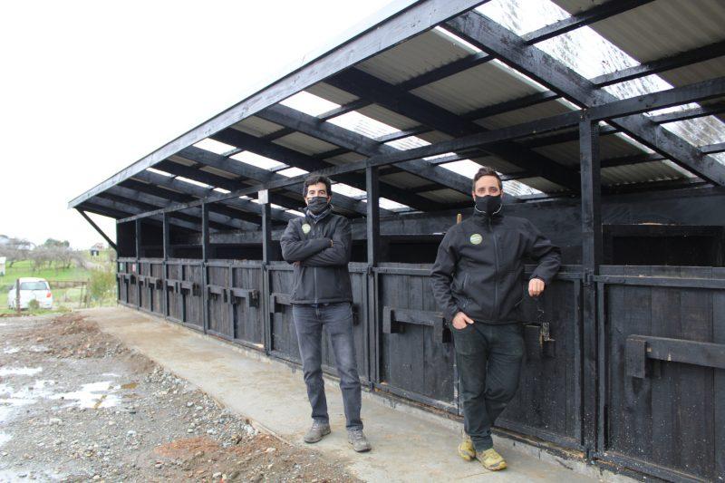 Socios de Regenera Orgánico posando junto a su zona de compostaje